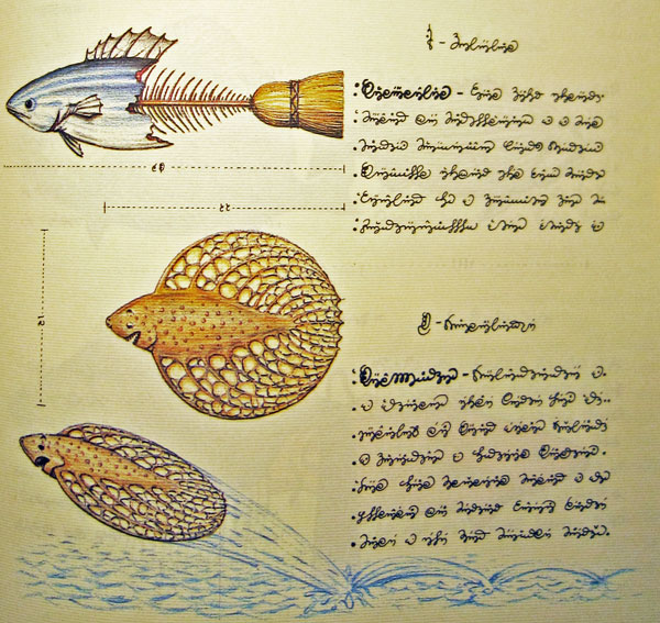 codex_fish_broom