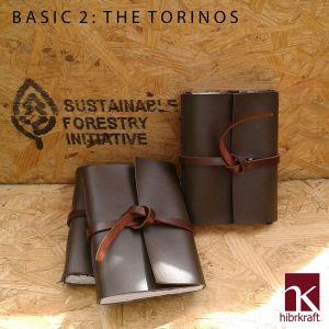 BASIC 2 Torinos