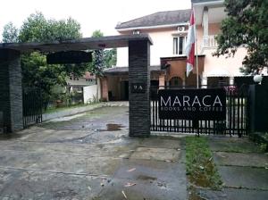 maracaca
